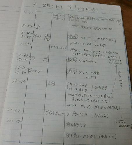 24_500.jpg